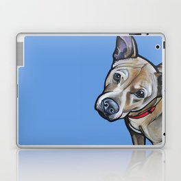 Fenway Laptop & iPad Skin