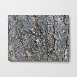 Tree surface Metal Print