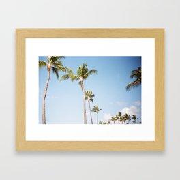 Kauai Palms Framed Art Print
