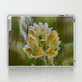 Yellow common Toadflax flower Laptop & iPad Skin