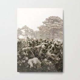 Nantucket Winter #5 Metal Print