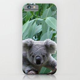 Koala and Eucalyptus iPhone Case