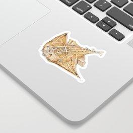 Angel shark Sticker