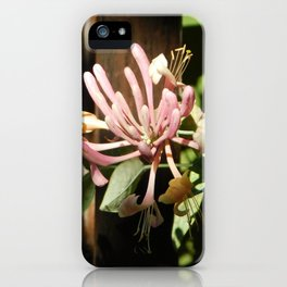 Pink Firework iPhone Case