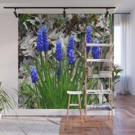 Grape Hyacinths Wall Mural