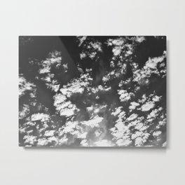 324 | austin Metal Print