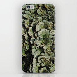Forest Mushrooms iPhone Skin