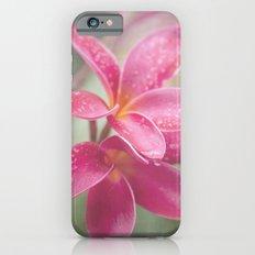 The Temple Tree iPhone 6s Slim Case