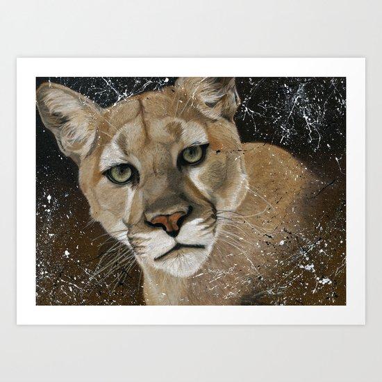 Mountain Lion Art Print