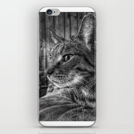 House Cat, Spart, 2017 iPhone Skin