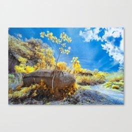 Big Stone Canvas Print
