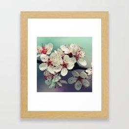 Cherry Blossom, Cherryblossom, Sakura, Vintage Style Framed Art Print