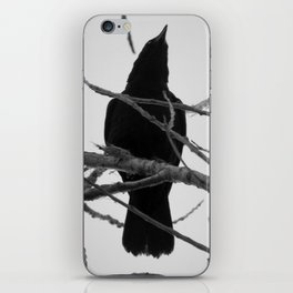 Crow Spirit iPhone Skin