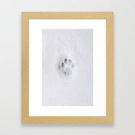 Kattepote i snøen Framed Art Print