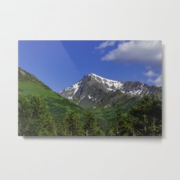 Scenic Seward Highway - Summer Metal Print