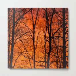 Leafless Trees At October Sunrise #decor #buyart #society6 Metal Print