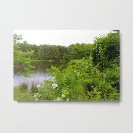 Wild Flowers on the lake Metal Print