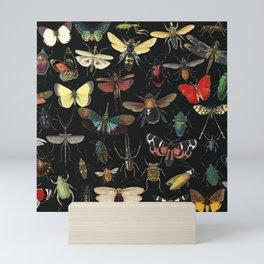 Lovely Butterfly Black Mini Art Print