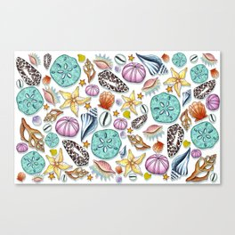 Illustrated Seashell Pattern Canvas Print