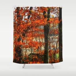 Kyle Lake Fall Leaves Shower Curtain