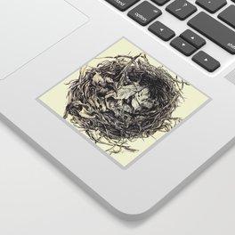 Birds Nest Sticker