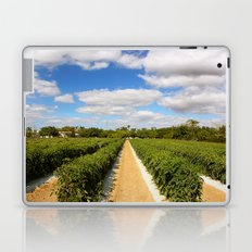 Tomato Fields  Laptop & iPad Skin