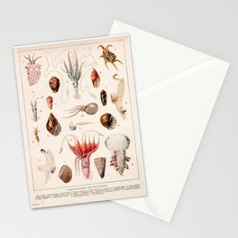 Adolphe Millot - Mollusques 01 - French vintage zoology illustration Stationery Cards