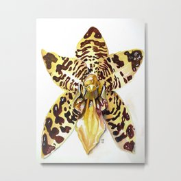 Ansellia Africana Orchid Metal Print