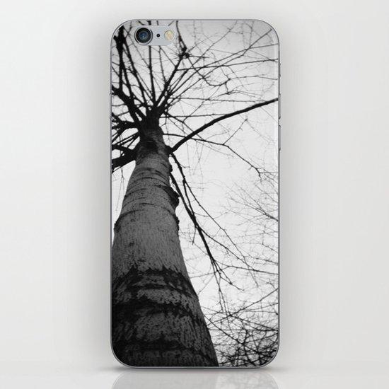 pantree iPhone & iPod Skin
