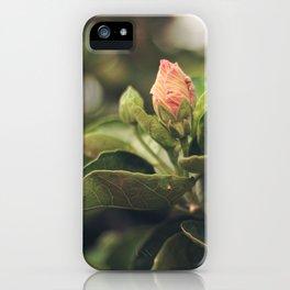 Capullo de Hibisco - Hibiscus bud iPhone Case