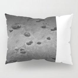 Plymouth Beach Pillow Sham