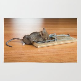 Dead Mouse in Trap Rug