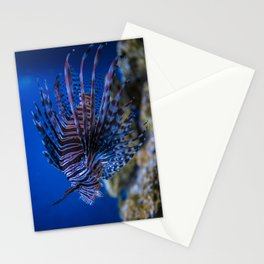 Pterois Miles (The Devil Fish) Stationery Cards