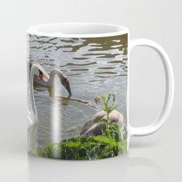 SWAN FAMILY  Coffee Mug