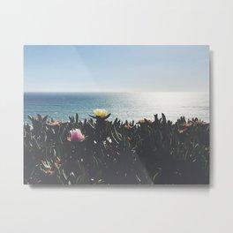 cactus flowers in front of the ocean Metal Print