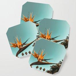 Birds of Paradise Print {1 of 3} | Palm Trees Ocean Summer Beach Teal Photography Art Coaster