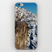 snow leopard iPhone & iPod Skins featuring snow leopard by Doug McRae