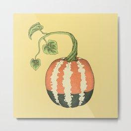 Sweet Dumpling Squash Metal Print