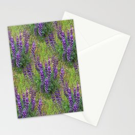 Lupines Galore.... Stationery Cards