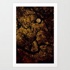 moonlit canopy Art Print