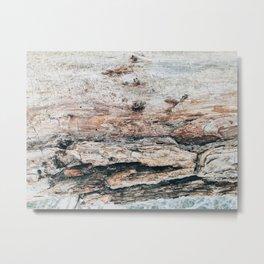 Winter wooden texture Metal Print