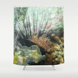 Watercolor Sealife, Magnificent Feather Duster 03, St John, USVI Shower Curtain