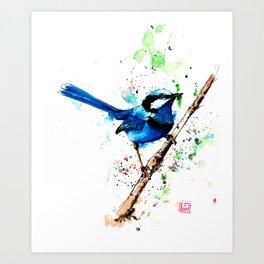 Eastern Blue Wren Art Print