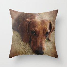 Dachshund Throw Pillow