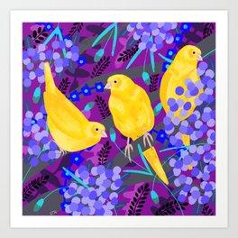 Canaries on Purple Art Print