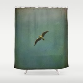 Vintage Flight Shower Curtain