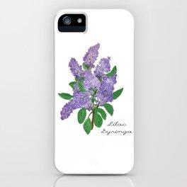 Lilacs: Syringa iPhone Case