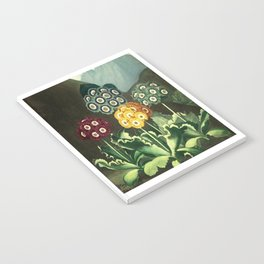 Group of Auriculas :  Temple of Flora Notebook
