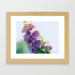 Nature 16 Framed Art Print