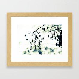 Rain Drop Jewels Part 2 Framed Art Print